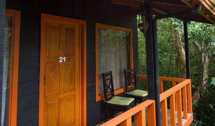 book budget vacations here in Monte Verde, Costa Rica