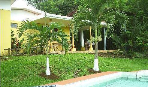 bed & breakfasts, motels, hotels and inns in Alajuela, Costa Rica